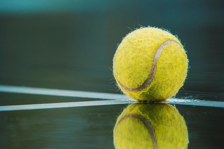 Finales de la Copa Davis 2019