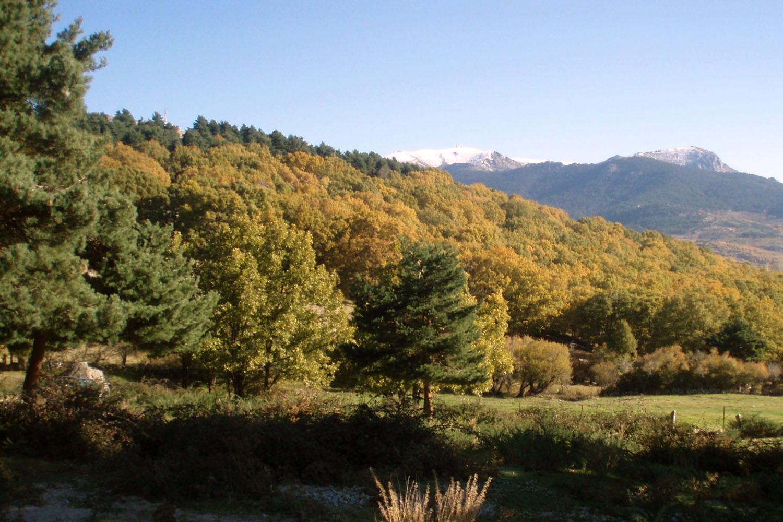 Diez paseos temáticos por la Sierra de Guadarrama