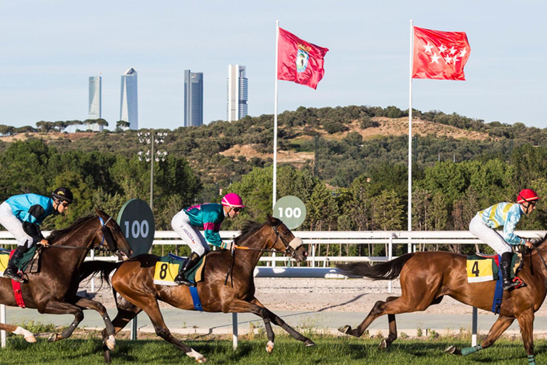 Las mañanas de domingo del 'Hipódromo de la Zarzuela'